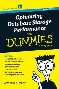 optimizing-database-storage-performance-for-dummies