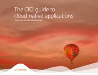 cio-gids--alles-wat-je-moet-weten-over-cloud-native-applications